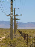 Fence-pwlines. Twin rows of a power-line and fence through sagebrush Royalty Free Stock Photo