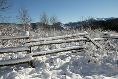 Fence in Pyrenees Stock Image