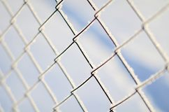 Fence of Rabitz is covered with frost stock photography