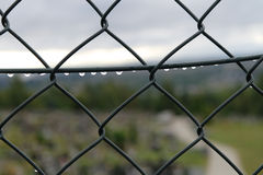 Fence after rain Royalty Free Stock Photo