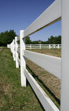 Fence of ranch Stock Image