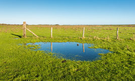 Fence reflected in a large puddle of water Royalty Free Stock Images