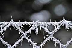Fence with rime Royalty Free Stock Images