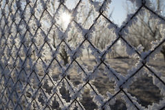 Fence with rime Stock Photos