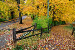 Fence And Road In Autumn Stock Photos