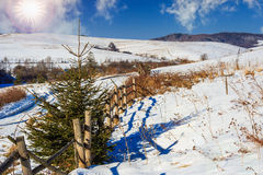 Fence by the road to snowy forest in the mountains Royalty Free Stock Image