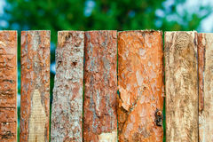 Fence of rough pine boards Royalty Free Stock Image