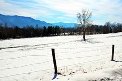 Fence row in front of mountains Stock Photo