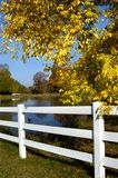 Fence Row View. White picket fence frames a pond.  Bright yellow leaves fall over  the right hand side of picture.  Blue sky is reflected in the water Royalty Free Stock Photos