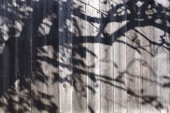Fence With Shadow Stock Photo