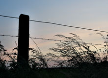 Fence silhouette Royalty Free Stock Image