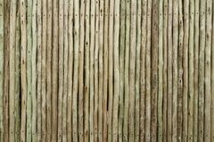 Fence with wooden stakes. Fence with small wooden stakes stock photography