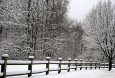 Fence in Snow Stock Image