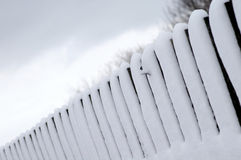Fence with the snow Royalty Free Stock Photography