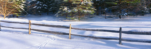 Fence and snow in winter, Stock Photography