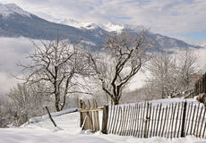 Fence in snowy garden Stock Photography