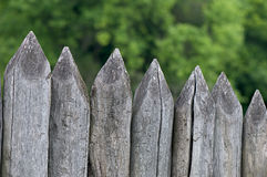 Fence stakes, a fence made of logs Stock Images