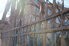 Fence street iron forged Royalty Free Stock Image