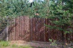 Fence stylized Palisade Stock Images