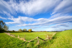 Fence on sunny dutch farmland Stock Photos
