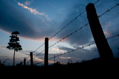 Fence at sunset. Sunset at fence with barbed wire Stock Photo