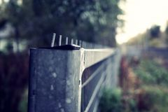 Fence at a sunset. A lone fence by a railroad during early autumn Royalty Free Stock Images