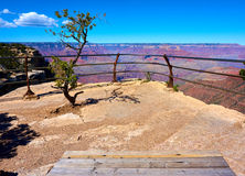 Fence, tree and bench in front of the grand canyon. Arizona, USA stock image