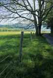 Fence, Tree, Road, Spring. Cades Cove, Great Smoky Mtns NP, TN royalty free stock photos