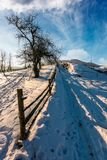 Fence and tree by the road uphill in winter. Lovely rural scenery in mountainous area Stock Photo