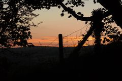 Fence and Tree Silhouetted Against Evening Sky. A tree and wire fence with fence post silhouetted against the evening sky Stock Photo