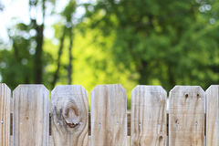 Fence and trees outdoors backyard background Royalty Free Stock Photos
