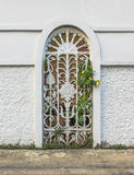 Fence Wall. Of the house with plant inside Royalty Free Stock Image