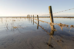 Fence in Water Royalty Free Stock Photography