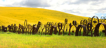 Fence of wheel rims against rapesee Stock Image