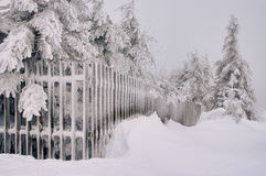Fence in winter Royalty Free Stock Photography