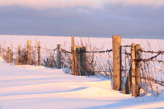 Fence in the winter Stock Photo