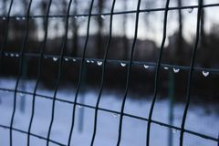 Fence-thaw. Fence in winter. Drops on a fence in a thaw royalty free stock image
