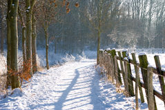 Fence in winter landscape Royalty Free Stock Image