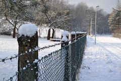 Fence in winter Stock Image
