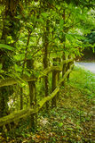 Fence in the wood Royalty Free Stock Photography