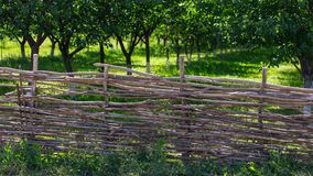 Fence of wooden branches in the garden.  stock photo