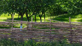 Fence of wooden branches in the garden.  stock photos