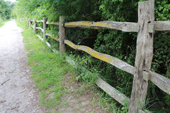 Fence in woods. Fence to hold back hedges Royalty Free Stock Photo