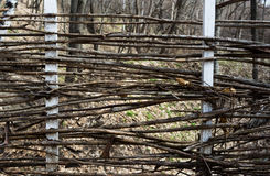 Fence woven out of dry twigs. Horizontal rectangular photo. royalty free stock photos
