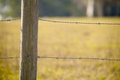 Fenced in. Barbed wire fence Royalty Free Stock Photo