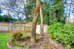 Fenced backyard with a small shed Royalty Free Stock Photo
