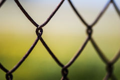 Fenced in Stock Image