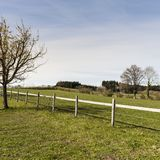 Fenced corral for cattle. In Switzerland. Swiss landscape with meadows and forest stock photos