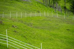 Fenced corral on a farm. White fence of corral in rural green landscape. Ukrainian farm in Carpathian Mountains. Warm summer day royalty free stock images