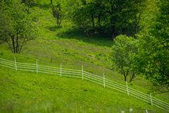 Fenced corral in the village. White fence of corral in rural green landscape. Ukrainian farm in Carpathian Mountains stock images